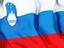 Reseller in Slovenia